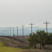 Utility Poles along roadside vanishing into distance at Big Bend National Park in Texas in summer.