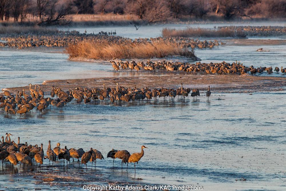 Platte River, Grand Island, Nebraska.