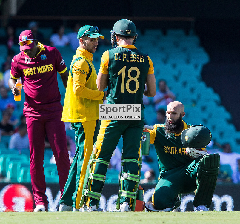 ICC Cricket World Cup 2015 Tournament Match, South Africa v West Indies, Sydney Cricket Ground; 27th February 2015<br /> South Africa&rsquo;s Hashim Amla (right) and South Africa&rsquo;s Francois Du Plessis have a break