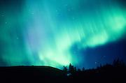 Alaska.  Northern Lights in winter sky.