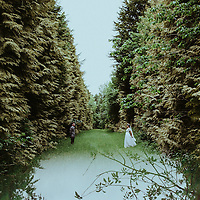 The Path of One Thousand Trees ~ Eleanor & Rob's Camp Katur Wedding