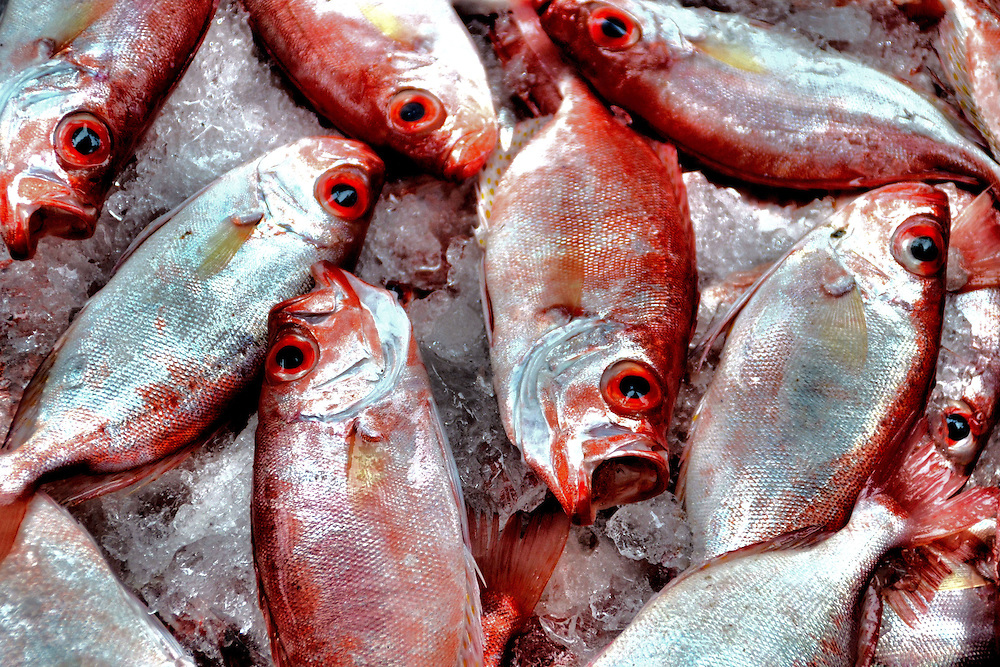 Orange Vietnamese Fish on Ice at Cho Dam Market in Nha Trang, Vietnam<br />