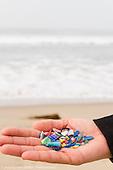 Feb 2016 WLAM Beach Clean Up