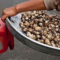 mobile mushroom vendor, cholon market, chinatown, ho chi minh city, vietnam