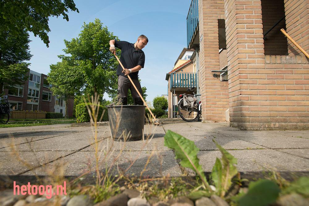 Nederland, nijverdal  28mei2013 Eric Veldhuis werkt in de tuin in de kruidenwijk te Nijverdal bij Aveleijn / dagbesteding voor mensen met een lichte zorgindicatie. Door bezuinigingen moet nog meer dan voorheen samengewerkt worden met andere instellingen. Mooi voorbeeld daarvan is de dagbesteding die Aveleijn heeft opgezet in de Kruidenwijk in Nijverdal. Dit doet Aveleijn samen met ZorgAccent, Interakt Contour en Stichting de Welle. We bekijken wat nodig is in de wijk en zetten cliënten daarop in. Denk daarbij aan onderhoud van de sporthal en het Kulturhus of het organiseren van een inloopochtend met koffie.