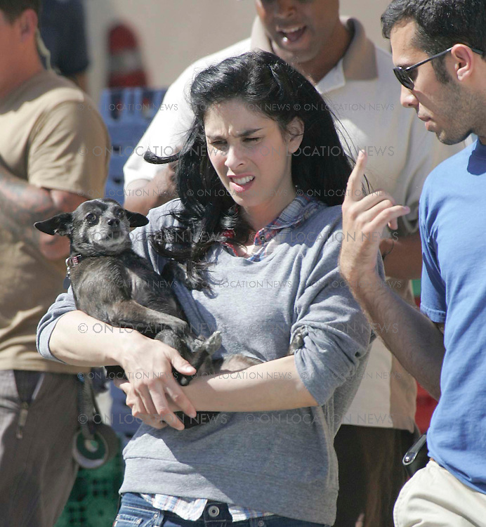 LOS ANGELES, CALIFORNIA - Thursday 23RD JULY 2008 NON EXCLUSIVE: Sarah Silverman on the set of her TV show 'The Sarah Silverman Program'. Sarah brought her dog 'Lucky' on set with her and had the dog by her side whenever possible. Lucky was even given her own directors chair. Silverman recently ended her 5 year relationship with talk show host Jimmy Kimmel. Photograph: On Location News. Sales: Eric Ford 1/818-613-3955 info@OnLocationNews.com