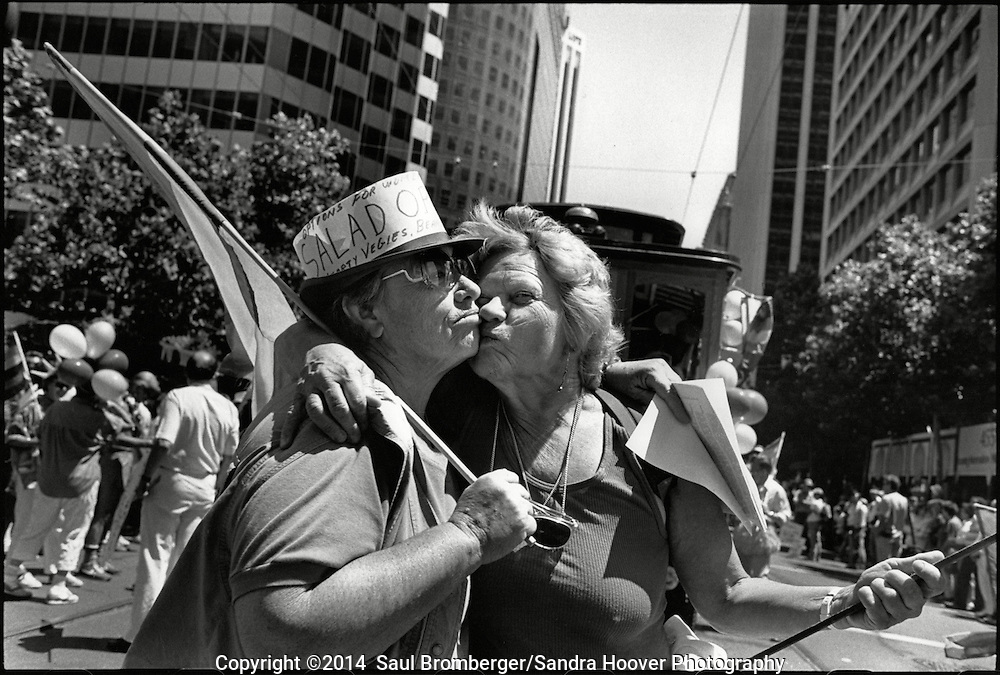 'The San Francisco Gay &amp; Lesbian Freedom Day Parade: 1984-1990'<br />