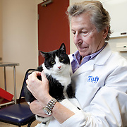 Dr. Nicholas Dodman, Professor and Section Head and Program Director for Animal Behavior at the Tufts Cummings School of Veterinary Medicine, photographed at the behavioral studies clinic. (Kelvin Ma/Tufts University)