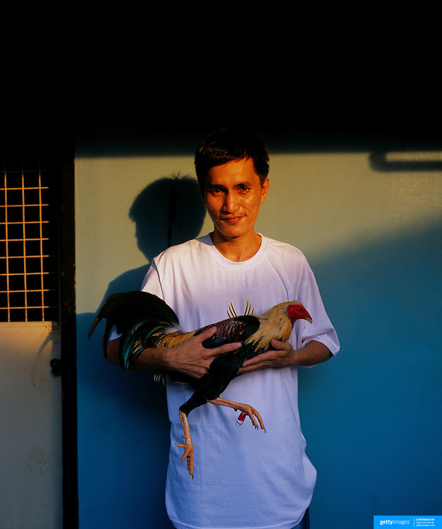 THE PHILIPPINES (Manila). 2009. Noel Lenchico, 40, with his game cock during the cockfighting at the La Loma Cockpit,  La Loma, Manila. Photo Tim Clayton <br /> <br /> Cockfighting, or Sabong as it is know in the Philippines is big business, a multi billion dollar industry, overshadowing Basketball as the number one sport in the country. It is estimated over 5 million Roosters will fight in the smalltime pits and full-blown arenas in a calendar year. TV stations are devoted to the sport where fights can be seen every night of the week while The Philippine economy benefits by more than $1 billion a year from breeding farms employment, selling feed and drugs and of course betting on the fights...As one of the worlds oldest spectator sports dating back 6000 years in Persia (now Iran) and first mentioned in fourth century Greek Texts. It is still practiced in many countries today, particularly in south and Central America and parts of Asia. Cockfighting is now illegal in the USA after Louisiana becoming the final state to outlaw cockfighting in August this year. This has led to an influx of American breeders into the Philippines with these breeders supplying most of the best fighting cocks, with prices for quality blood lines selling from PHP 8000 pesos (US $160) to as high as PHP 120,000 Pesos (US $2400)..