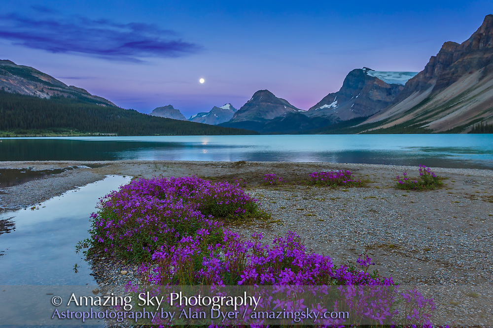 The nearly Full Moon (0ne day before Full) rising at the end of Bow Lake, with purple flowers (Purple Saxifrage?) in the foreground. Taken August 9, 2014. This is an HDR High Dynamic Range stack of 5 exposures at 2/3rds stop intervals, with the Canon 16-35mm lens and Canon 6D at ISO 400.