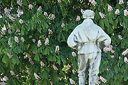 """Dr Edward Wilson contemplates a  Horse chestnut tree, Cheltenham  in the Long Garden in front of the Municipal Offices. ..In 1910 he joined the famous Captain Scott on his National Antarctic Expedition to the South Pole, but tragically both men died in March 1912 on the return journey...News of Wilsons death reached Cheltenham in February 1913 and a fund was set up to create a memorial to the explorer. The original plan was for two plaques to be hung in the Town Hall but Wilsons widow suggested that as Edward loved the outdoors a more suitable memorial should be erected. The bronze statue shown was modelled by Scotts widow and was unveiled on 9th July 1914 by Arctic explorer Sir Clarence Markham. A display of Wilsons Arctic clothing and kit, as well as some of his artwork, can be found at the Cheltenham Art Gallery and Museum...The inscription on the plinth of the statue reads - """"He died as he lived, A brave true man. The best of comrades and the staunchest of friends."""""""