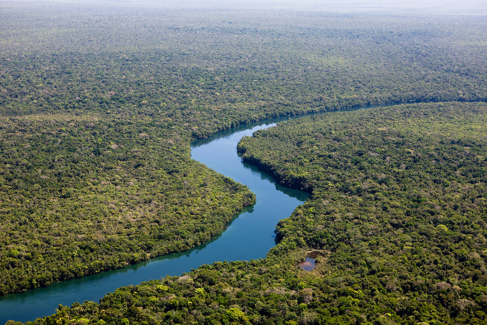 A tributary to the Amazon bisects virgin rainforest in Mato Grosso, Brazil, August 9, 2008. Daniel Beltra/Greenpeace