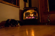 Dog, by stove, Montana, winter, night, PROPERTY RELEASED