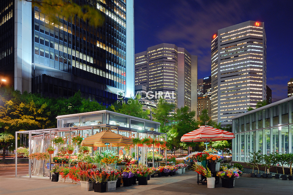 architecture photography: The flower shop of Square Victoria at the blue hour, Financial district, Old Montreal, Quebec, Canada