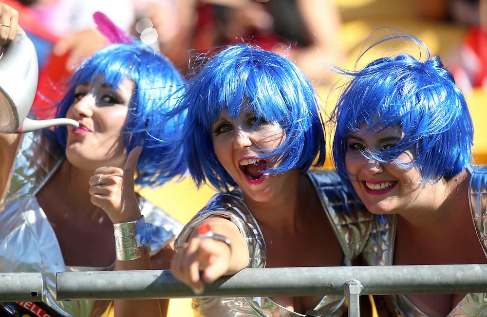 Fans enjoy the IRB International Rugby Sevens, Westpac, Wellington, New Zealand, Saturday, February 02, 2013. Credit: SNPA / John Cowpland