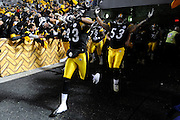 PITTSBURGH, PA - JANUARY 23: Maurkice Pouncey #53 and other members of the Pittsburgh Steelers get introduced to the crowd before a game against the New York Jets in the AFC Championship Playoff Game at Heinz Field on January 23, 2011 in Pittsburgh, Pennsylvania(Photo by: Rob Tringali) *** Local Caption *** Maurkice Pouncey