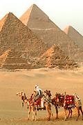 EGYPT, ANCIENT MONUMENTS Giza Pyramids and camel caravan
