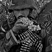 Afghanistan: The Fighting Season