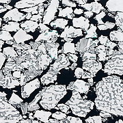 Aerial view of the slushy melt of sea ice in the Arctic Ocean in September, 2012. The average temperature of the Arctic is rising more than twice as fast as the earth as a whole.