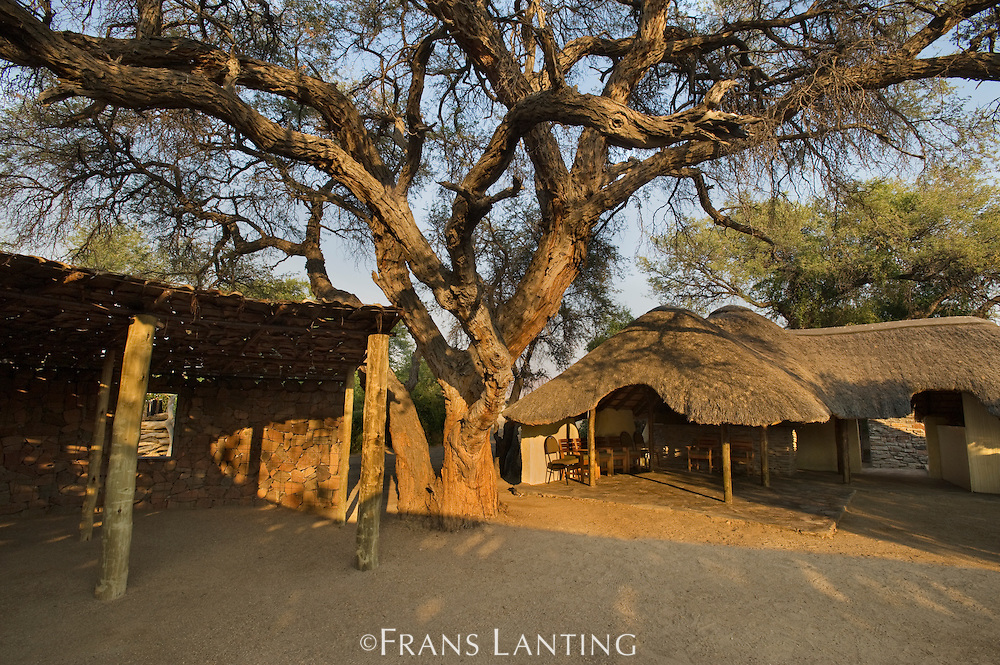 Puros Bush Lodge, Puros Conservancy, Damaraland, Namibia