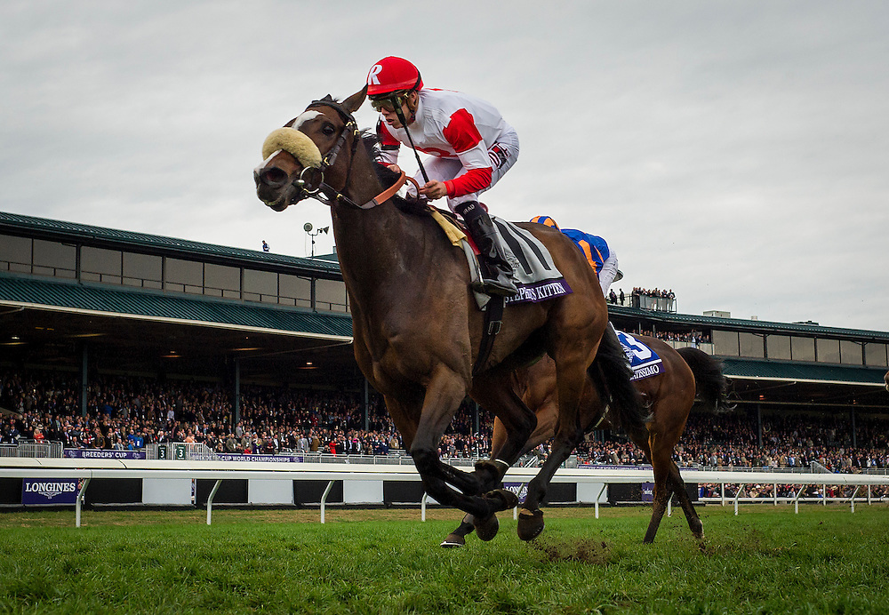 October 31, 2015:  Stephanie's Kitten with Irad Ortiz up wins the Breeders' Cup Filly and Mare Turf at Keeneland Race Track in Lexington, Kentucky. Evers/ESW/CSM