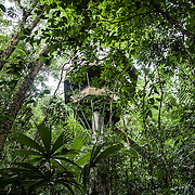"""El Castillo"" tree house, one of the most iconic and famous treehouse of Finca Bellavista"