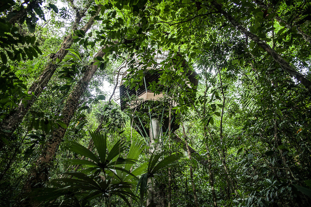 """""""El Castillo"""" tree house, one of the most iconic and famous treehouse of Finca Bellavista"""
