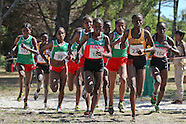 2012 African Cross Country Championships