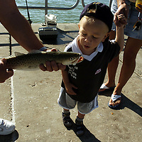 (02.03.2005)(PHOTO/CHIP LITHERLAND) -- Holding the hand of his mother, Lenka, a curious Rico Eckert, 2, gets a close up look at a trout a fisherman caught while on his family's 5-week vacation from Germany on the pier at Manatee Public Beach on Anna Maria Island Thursday, February 3, 2005.