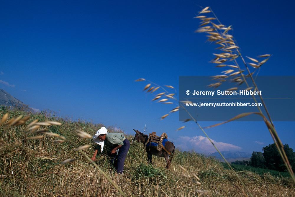 Woman working the fields, Albania, 1994.