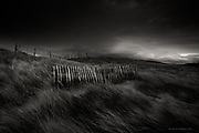 Tiny blades of light penetrated the thick armour of black clouds over the Irish Sea. Pierced into soft dunes were short lengths of delicate fencing, resolutely standing their ground in the shifting sand, but gradually becoming eroded by the relentless attack of wind and weather.