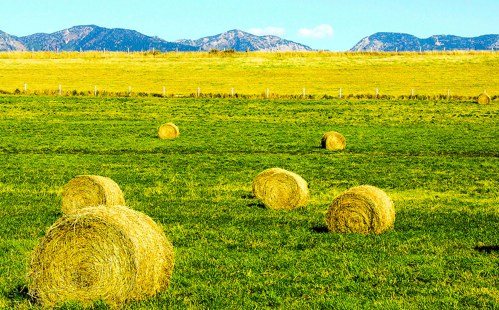 A rural ranch in Montana.The mid-afternoon sun adds brightness to the scene.  I intentionally positioned a large hay roll at the lower left to add more depth to the scene.