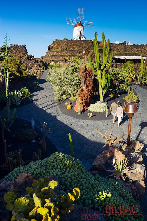 Jardin de Cactus (Cactus Garden) of Cesar Manrique. <br /> Guatiza, Teguise. Lanzarote, Canary Islands, Atlantic Ocean, Spain.