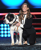 11/22/2014 - Fox's Cause For Paws: An All-Star Dog Spectacular