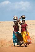 Sri Lanka. Udappu. The September festival