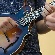 Subdued Stringband Jamboree - 2014