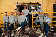 Team of workers finished from the day's work of chopping and carrying agave plants used for Tequila production into stone oven to bake for 48 hours, Tequlia, Mexico
