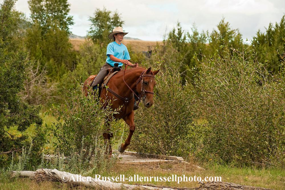 Teenager, girl, trail riding, Quarter Horse, Montana