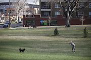 SHOT 3/31/10 6:09:02 PM - Denver real estate for 5280 Magazine - Jefferson Park neighborhood.  (Photo by Marc Piscotty / © 2010)