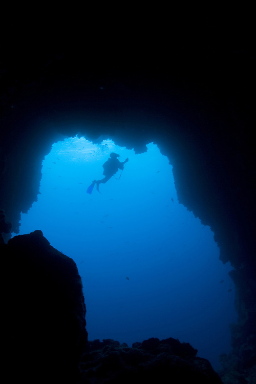 Ecuador, Galapagos Islands National Park,  Wolf Island, Underwater view of Scuba Divers swimming at cave entrance