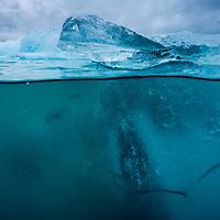 Iceland, Skaftafell National Park, Underwater view of Iceberg from Vatnajokull Glacier in Jokulsarlon Lake at dusk
