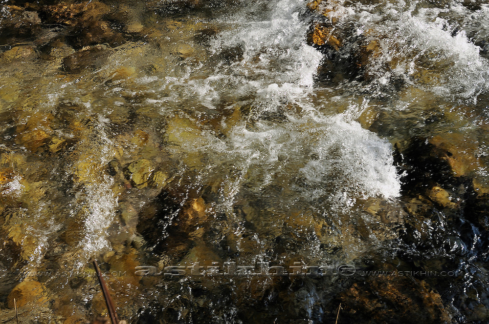Moving stream in Carinthia.