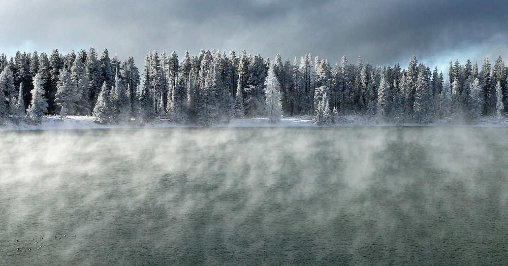 Morning temperatures of -10 degrees Fahrenheit cause the formation of fog and the buildup of hoarfrost on lodgepole pines surrounding Indian Pond in Yellowstone National Park.