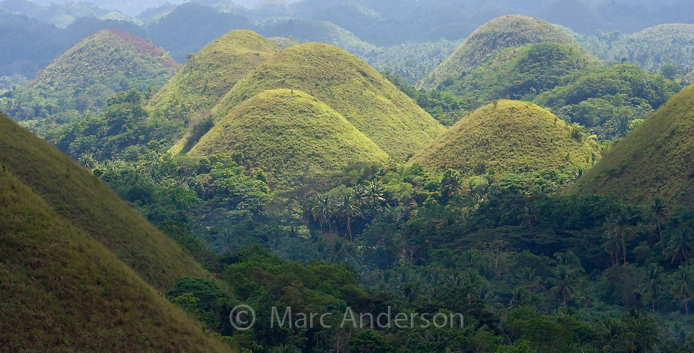 A View of the famous Chocolate Hills, Bohol, Philippines