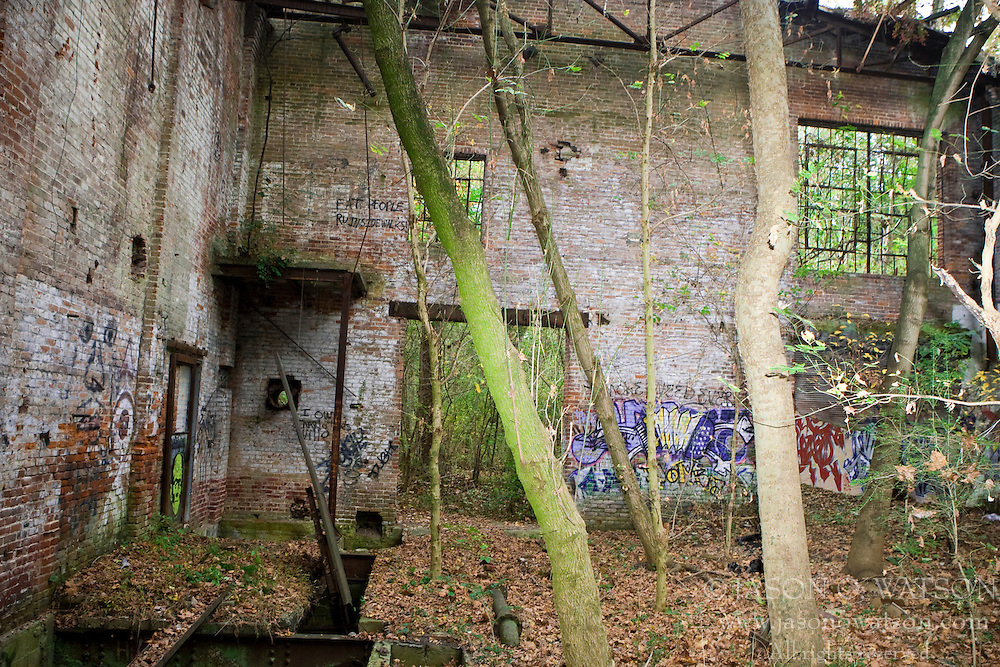 The abandoned Charlottesville Woolen Mills site has its walls covered in graffiti and trees growing from the floor.