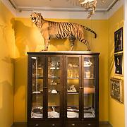 Vitenskapsmuseet NTNU