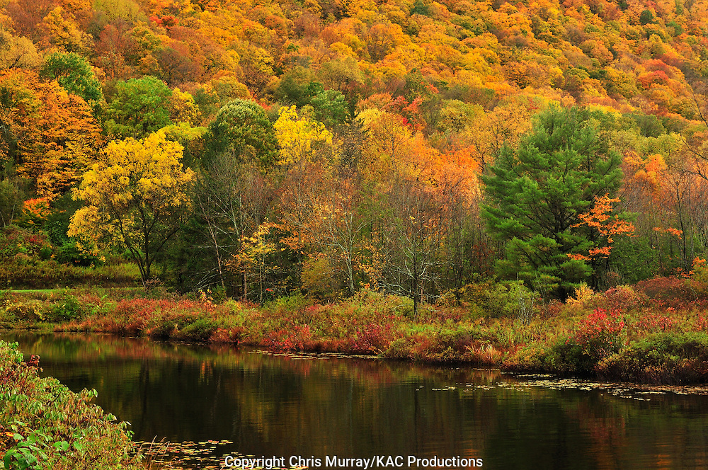 Autumn colors along Labrador Pond, New York, USA