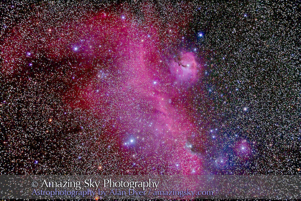 IC 2177 Complex known as the Seagull Nebula, that includes NGC 2337, and Gum 1 (patch of nebulosity at right) and NGC 2343 cluster at left and NGC 2335 cluster at top. It is on the Monoceros-Canis Major border. This is a stack of 4 x 12 minute exposures at ISO 800 with the filter-modified Caon 5D MkII and thru the Astro-Physics 105mm Traveler apo refractor at f/5.8 with the 6x7 field flattener. Taken from Timor Cottage, Coonabarabran, NSW, Australia, December 12/13, 2012. Shot without a dark frame subtraction by mistake.