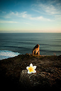 A monkey and a frangipani catch the light of the sun near Uluwatu Temple, Bali, Indonesia.