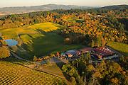 Aerial view over Elk Cove estate Vineyard, Willamette Valley, Oregon